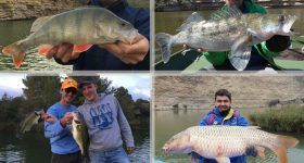 all inclusive fishing packages on the ebro river
