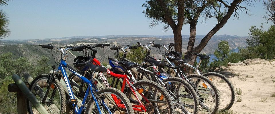 bike rental available on the camping portmassaluca in spain