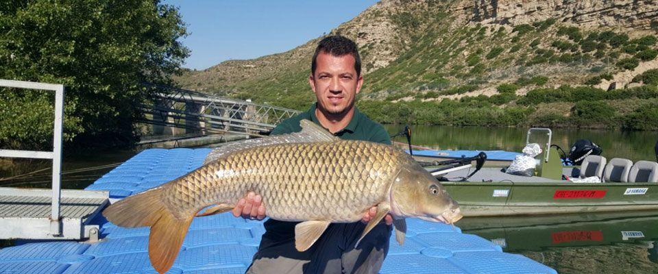 Ebro-fishing-boat-kayak-campsite-restaurant-Portmassaluca-11