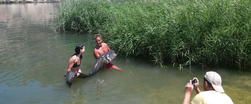 catfish fishing on the ebro river from the shore of the camping