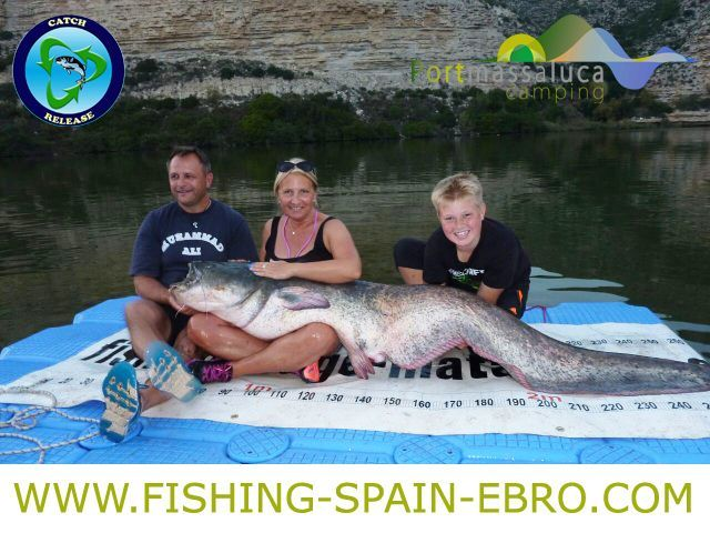 fishing-offer-spain-ebro-big-catfish-2016