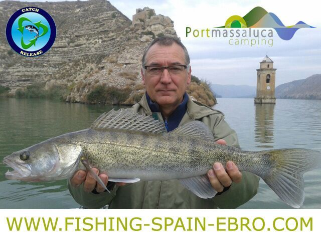 fishing-offer-spain-ebro-big-zander-sander-2016