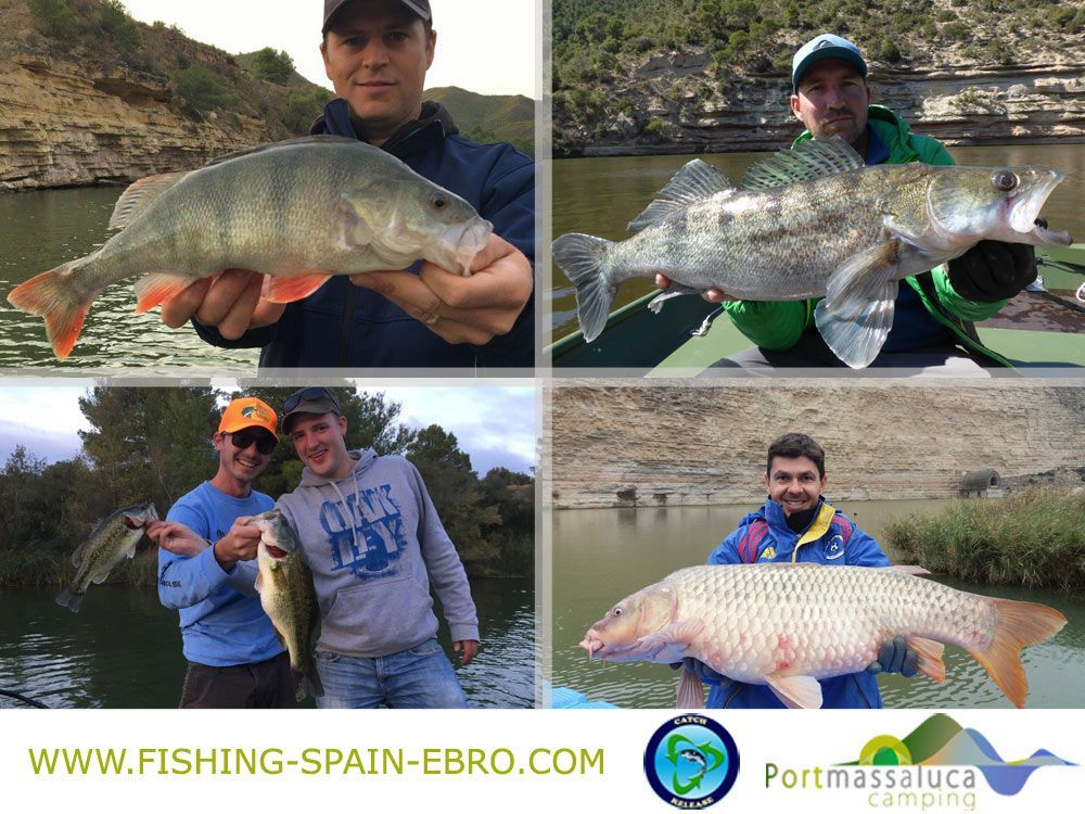 Fishing-ebro-spain-zander-perch-bass-carp-spinning