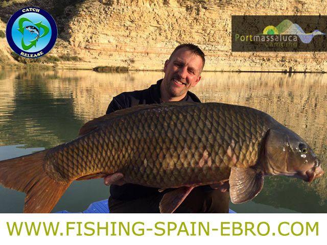 oferta-pesca-spain-ebro-grande-carpa-carpfishing-promocion-2016
